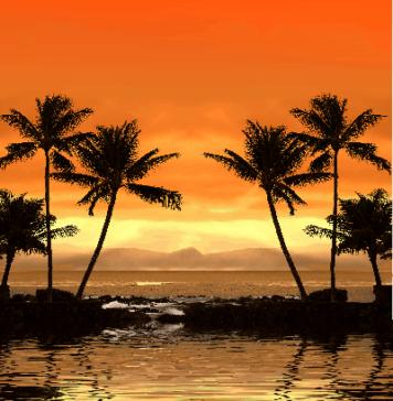 Пляж пальмы экзотика
